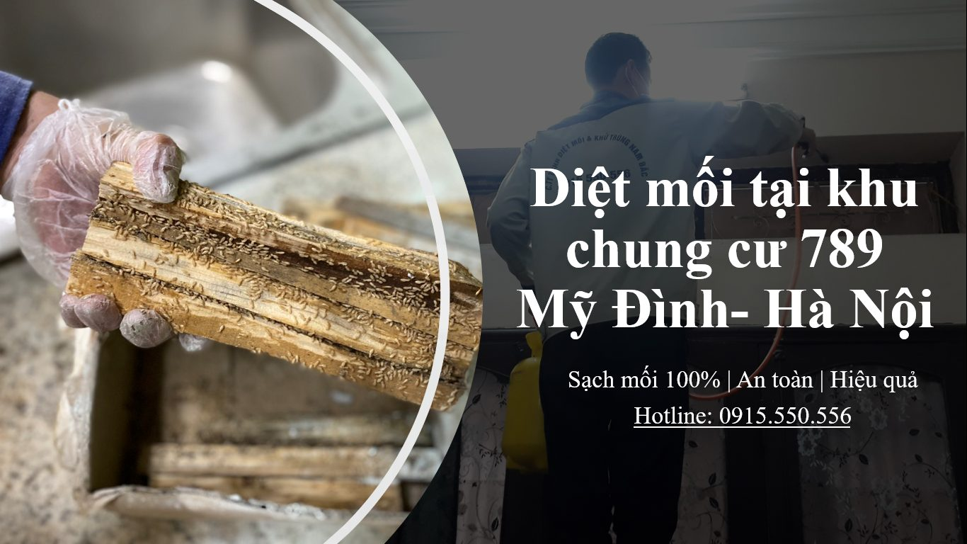 diet-moi-chung-cu