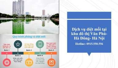 Diệt mối tại Văn Phú