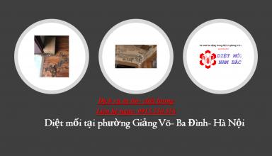 diet-moi-tai-giang-vo