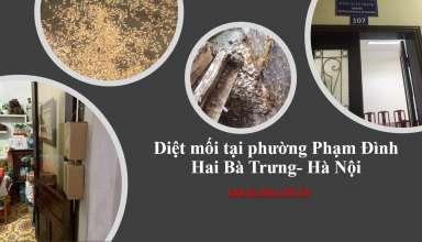 diet-moi-tai-pham-dinh