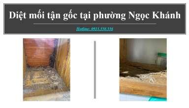 diet-moi-tai-Ngoc-Khanh