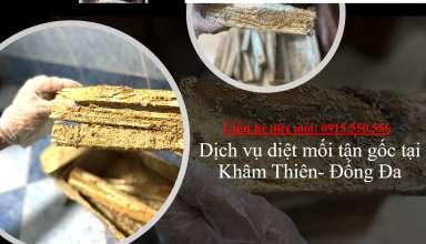 diet-moi-tai-kham-thien